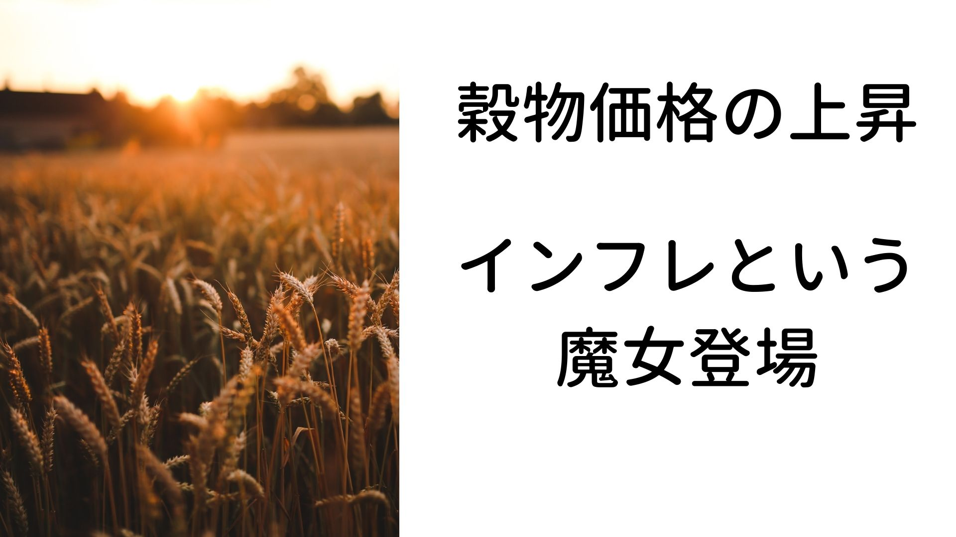 穀物価格の上昇