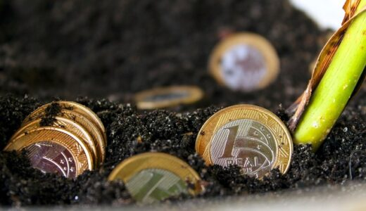上手に外貨投資したい方に。南アフリカランド・ブラジルレアルは、値動きが先進国の通貨とはまったく違います!