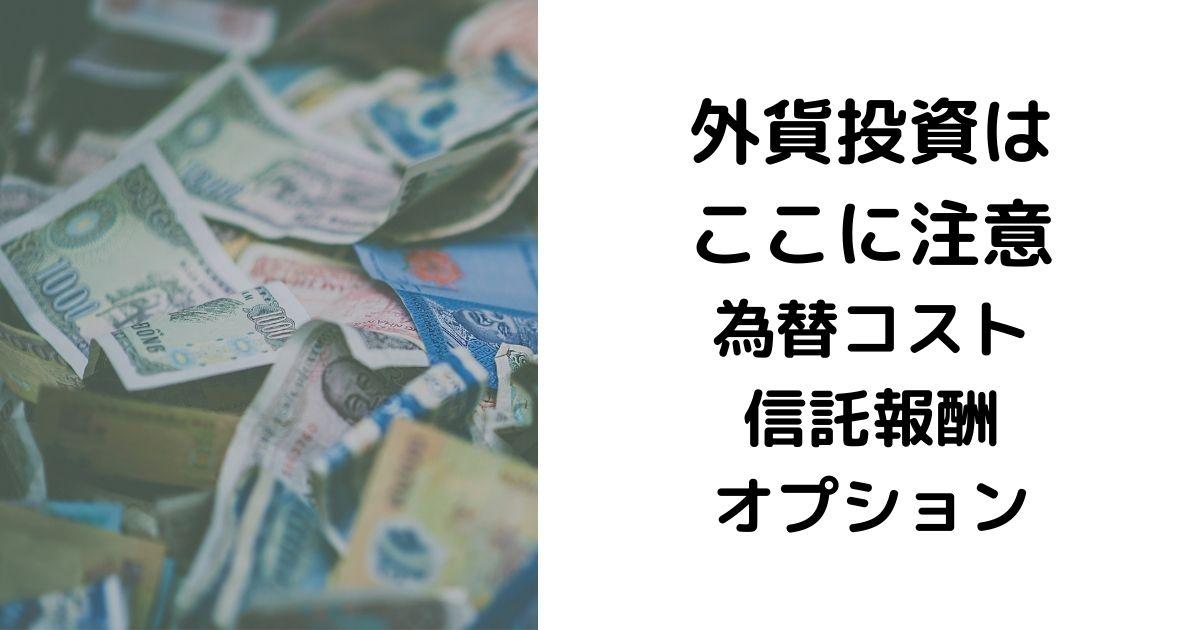 外貨投資 為替コスト 信託報酬 オプション