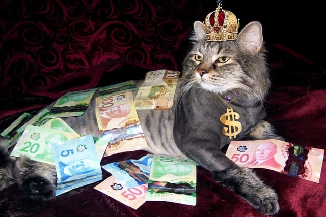 富裕層 定義 特性